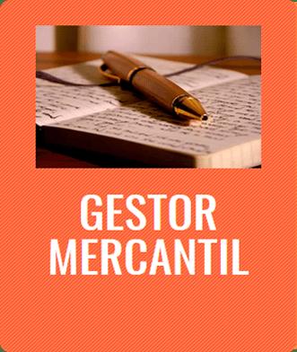 Gestor mercantil